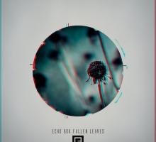 Echo Box – Fallen Leaves