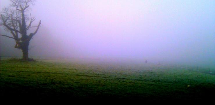 [Free Tune] Ohm – In The Winter Fog