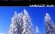 DimbiDub – Dub Tones EP Pt.2 (DIMBI007)