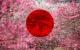 [Preview] Pulse Code Modulation – Hakuro/Sakura Serrulata (Pong Music)