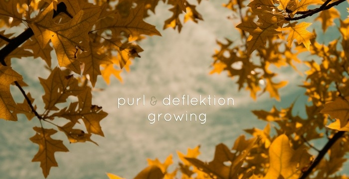 """[Preview] Purl & Deflektion – Autumn Legend (From forthcoming """"Growing LP"""" on Dewtone Recordings)"""