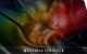 [Free Download] Matthias Springer – Egomaniac Remixes