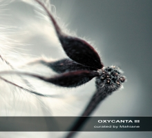 [Preview] Various – Oxycanta III