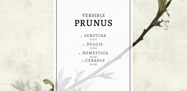 Versible – Prunus EP