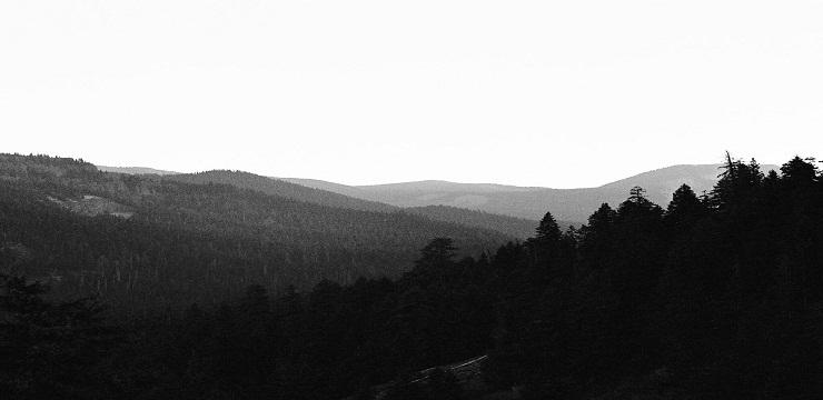 Archivist – Pathfinder EP