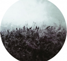 Gimenö & Stefan Helmke – Blueten 002
