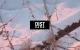 Dist – Dawn EP [BIG55]